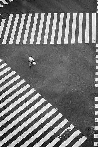 photo asphalt man walking at the center of crisscrossing pedestrian lanes black-and-white free for commercial use images