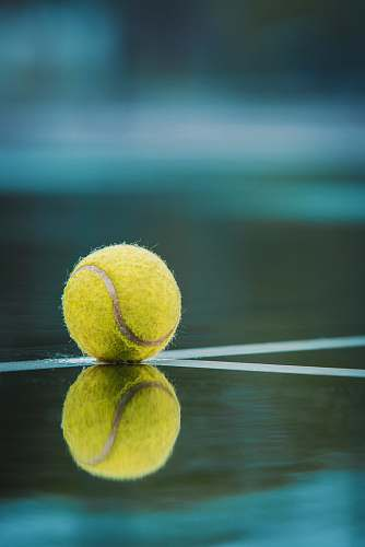 ball  tennis ball