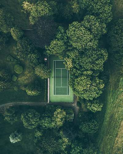 green aerial photo of tennis court surrounded with trees nature