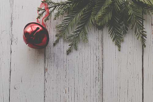 photo plant red Christmas ball hangs on tree sphere free for commercial use images