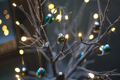 photo christmas turned on string lights hanging on bare tree with baubles grey free for commercial use images