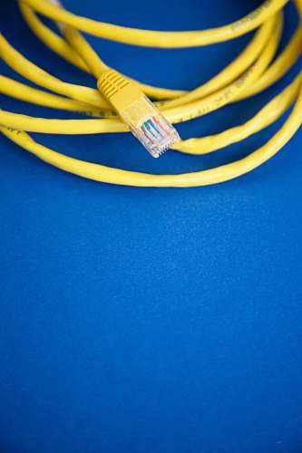 photo erlangen Ethernet cable on blue surface deutschland free for commercial use images