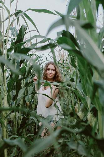 person smiling woman standing in the middle of corn field female