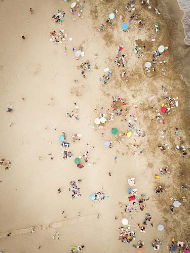 paper aerial photography of people on beach confetti