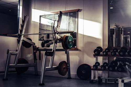 photo exercise barbell on rack gym free for commercial use images