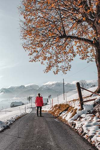 exercise photo of person walking on road wearing red jacket jogging