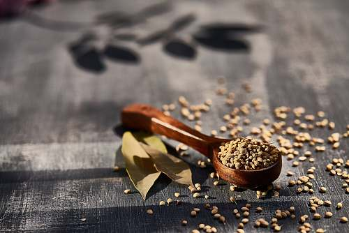 vegetable brown wooden spoon filled with seeds produce