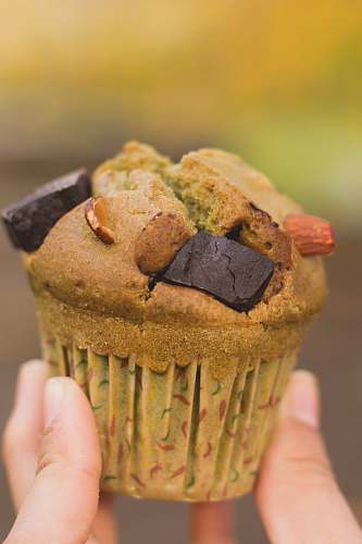 photo muffin person holding brown cupcake dessert free for commercial use images