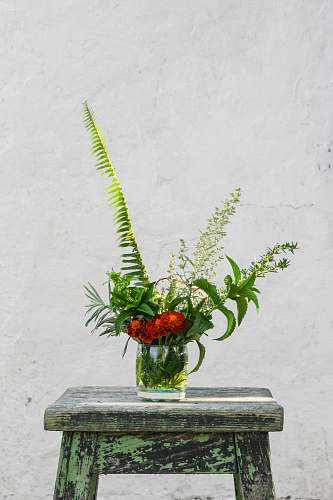 photo flower red petaled flowers in glass vase on blue wooden bar stool vase free for commercial use images