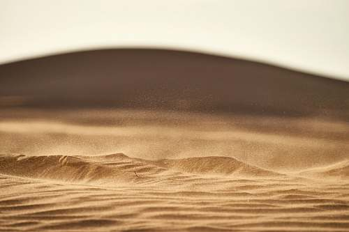 soil brown sand in closeup photography outdoors