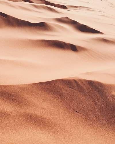 nature photo of desert sand desert