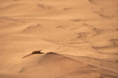 photo nature brown sand sand free for commercial use images