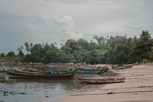phuket boat on seashore during daytime thailand