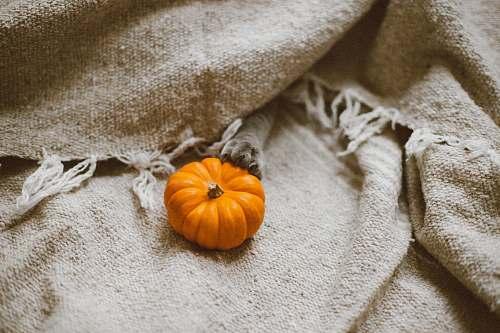 squash pumpkin on brown canvas textile vegetable