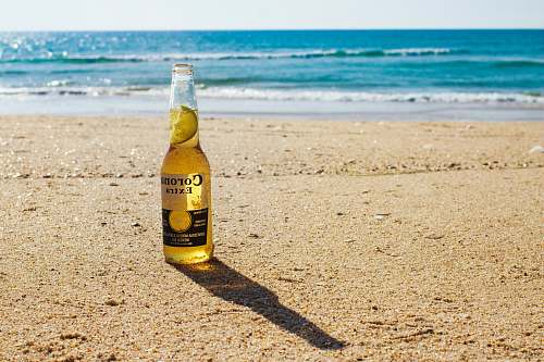 photo beer Corona Extra bottle on seashore during daytime bottle free for commercial use images