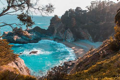 ocean body of water near trees and mountain cliff during daytime sea