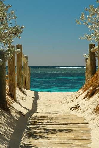 sea body of water scenery summer