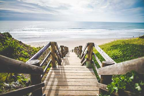 photo sea brown wooden walkway near beach during daytime bridge free for commercial use images