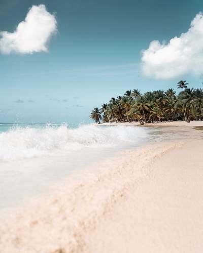 ocean long exposure photography of beach water