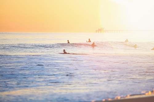 water people surfing on beach ocean