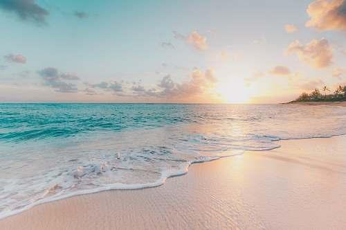ocean seashore during golden hour sea