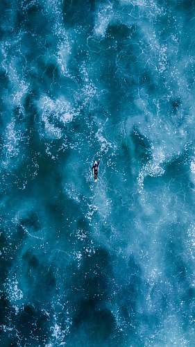 photo surf person swimming on body water somo free for commercial use images