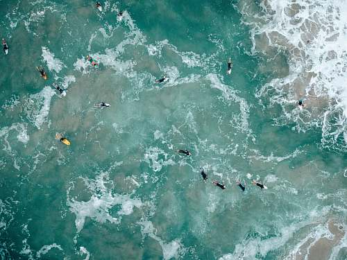 photo australia aerial view of body of water sea life free for commercial use images