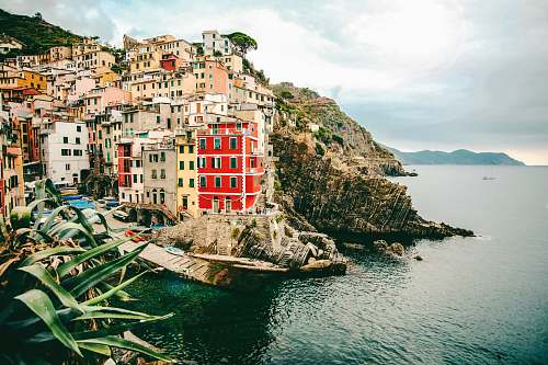 town assorted-color buildings and body of water riomaggiore
