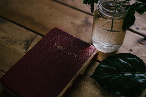 photo vase Holy Bible beside clear mason jar on table bible free for commercial use images