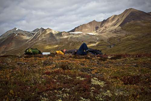 outdoors man lying on plant field near mountains camping