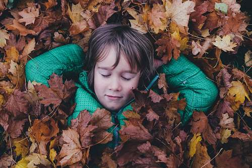 photo autumn closed eye boy laying on brown maple leaves sleeping free for commercial use images