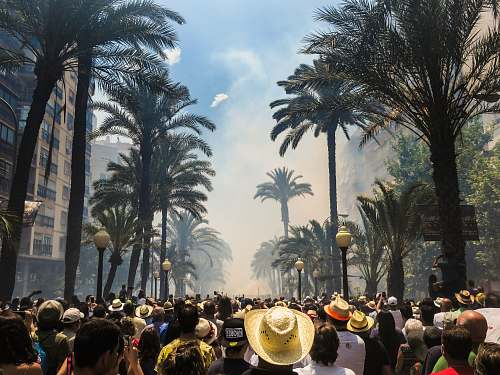crowd people standing on road between coconut palms surrounded by smoke human