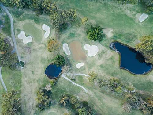 aerial view body of water surrounded with green trees painting golf