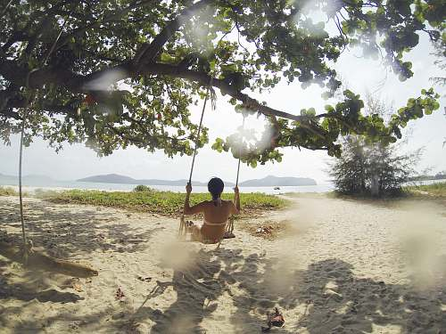 summer woman sitting on swing under green tree facing body of water at daytime thailand