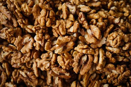 nut brown nuts walnut