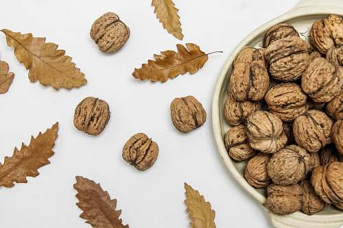 flora brown walnuts on beige ceramic bowl leaf