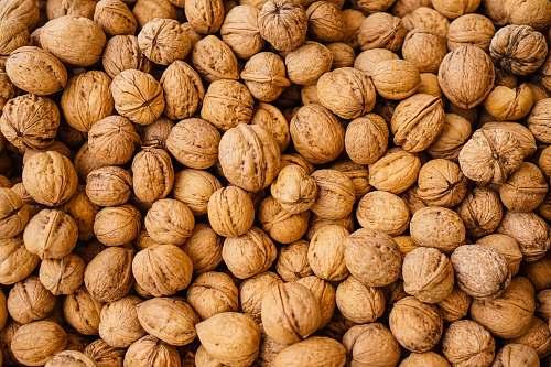 nut closeup photography of walnuts walnut