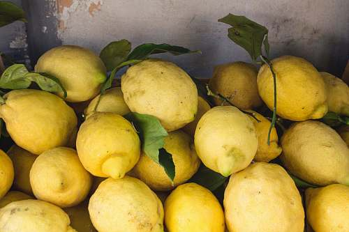 citrus fruit yellow citrus fruits food