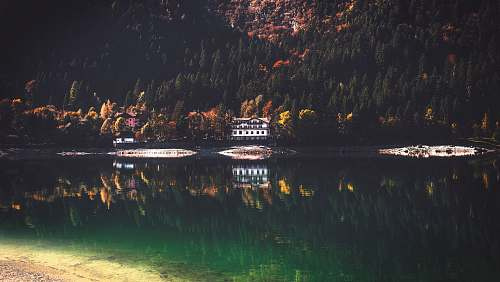 photo lake wooden house near mountain with trees and lake at daytime trees free for commercial use images