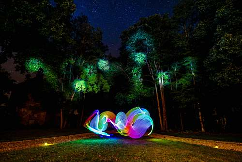 night light writing photography in forest trees