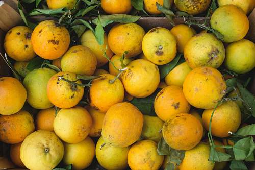 photo citrus fruit bunch of yellow fruits fruit free for commercial use images