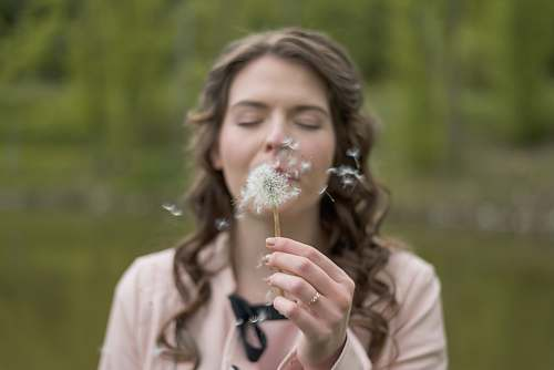 female woman blowing dandelion flower human