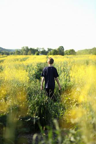 people boys walking in yellow flower field during dayitme boy
