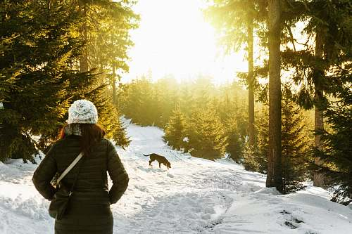 people person standing on snow covered forest watching dog sun