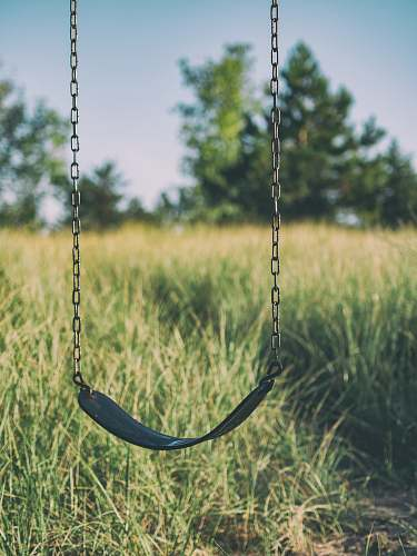 toy swing chair hanged outdoor grass