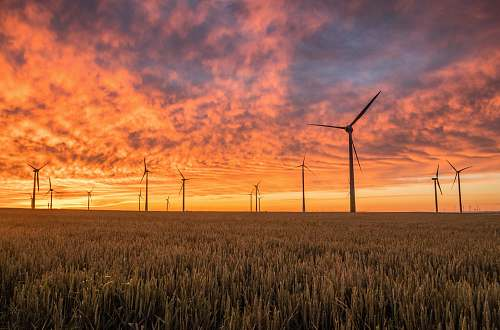 grass landscape photography of grass field with windmills under orange sunset energy