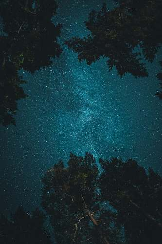 nature starry night outdoors