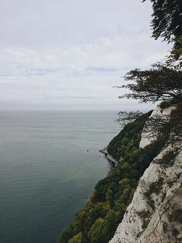 outdoors body of water beside trees during daytime cliff