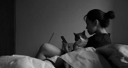 photo human woman holding cat while using smartphone on bed grey free for commercial use images