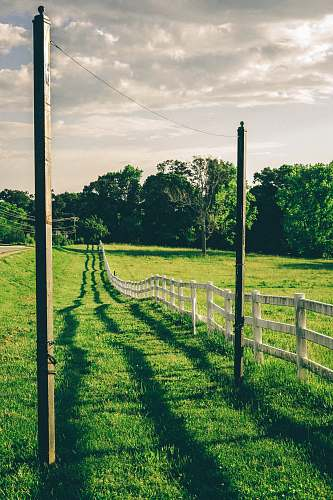 nature white fence on green field at daytime outdoors